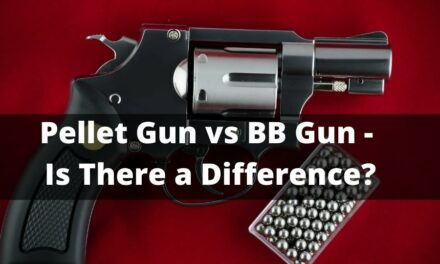 Pellet Gun VS BB Gun – Is There a Difference?