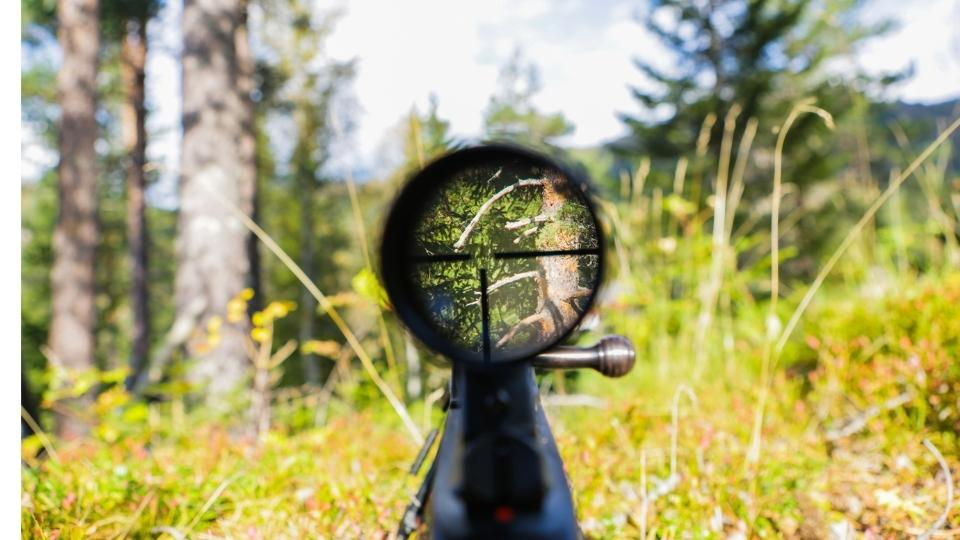 Rifle Scope for Dear Hunting