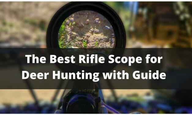 The Best Rifle Scope for Deer Hunting with Guide 2021