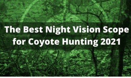 The Best Night Vision Scope for Coyote Hunting 2021