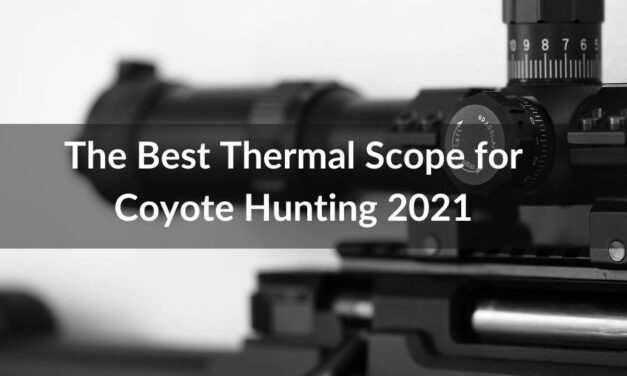 The Best Thermal Scope for Coyote Hunting 2021